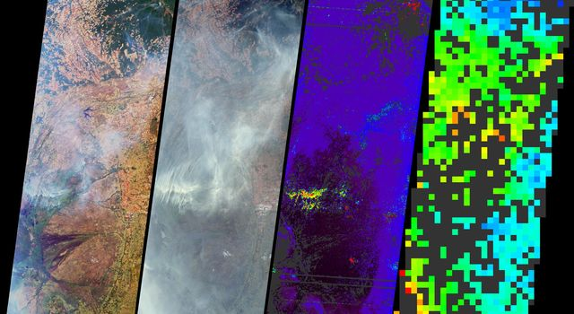 Numerous fires occurred near the headwaters of the Xingu River and the Xingu Indigenous Peoples' Reserve in Mato Grosso, Brazil, during late June and early July, 2004, as seen by NASA's Terra spacecraft.