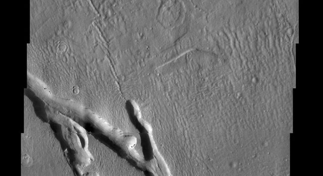 Hrad Vallis, seen in this NASA Mars Odyssey image, appears to be affecting the local wind patterns. The texture of the terrain just around the valleys is markedly different from that its surroundings.