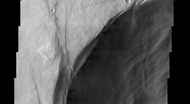 Pavonis Mons is the middle of the three large volcanoes on the Tharsis bulge. This image from NASA's Mars Odyssey spacecraft covers the edge of the volcano's caldera. Outside of the caldera, numerous lava flows and impact craters can be seen.