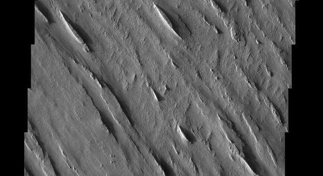 The Medusae Fossae formation, seen in this NASA Mars Odyssey image, is an enigmatic pile of eroding sediments that spans over 5,000 km (3,107 miles) in discontinuous masses along the Martian equator.