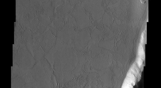 The predominant feature in this image from NASA's Mars Odyssey spacecraft is a large flooded crater. Are the flows lava or mud? Scientists don't agree.