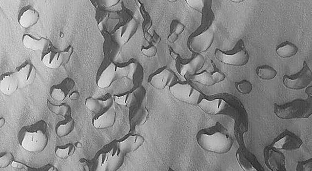 NASA's Mars Global Surveyor shows a field of defrosting sand dunes in Chasma Boreale in the martian north polar region.
