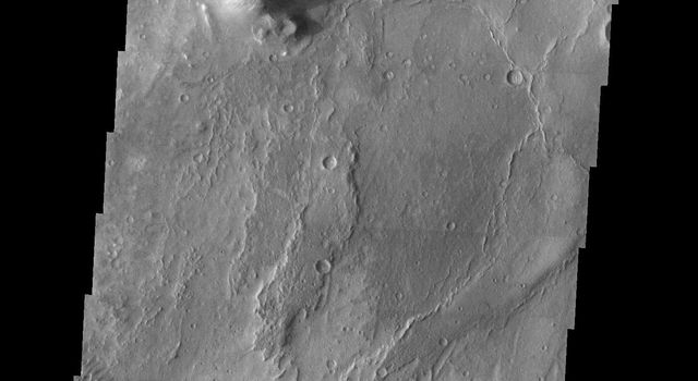 At the summit of the low-relief shield volcano Syrtis Major on Mars, the caldera known as Nili Patera hosts a remarkable field of barchan-like dunes as seen in this image captured by NASA's Mars Odyssey spacecraft.