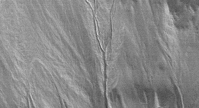 NASA's Mars Global Surveyor shows a pattern of branching channels in an apron of debris that distributed the sediment and fluid carried by the large gully on Mars.