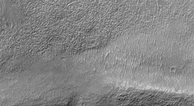 NASA's Mars Global Surveyor shows gullies in the upper crater wall and emergent from the slope of a lower terrace on Mars.