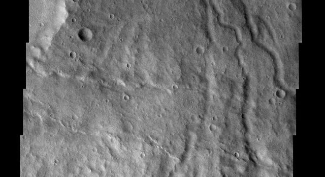 NASA's Mars Odyssey spacecraft captured this image in July 2003, showing younger crenulated lava flows of Daedalia Planum lap up against the ancient highlands on Mars. The crenulated ridges are most likely pressure ridges.