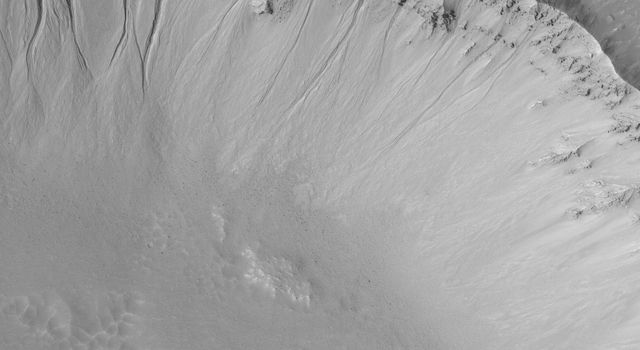 NASA's Mars Global Surveyor shows a suite of gullies in the wall of a crater on Mars. The gullies are considered to have formed by downslope transport of water-laden debris.