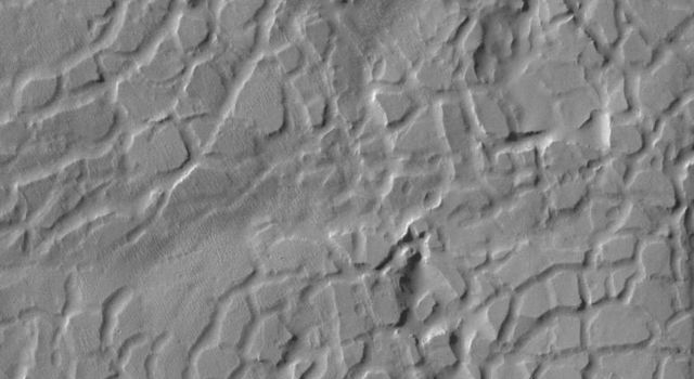 This image, part of an images as art series from NASA's 2001 Mars Odyssey released on Feb 19, 2004 shows a cracked, chaotic terrain bearing a striking similarity to reptile skin, perhaps a very large alligator.
