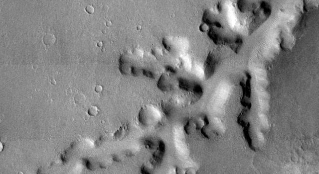 This image, part of an images as art series from NASA's 2001 Mars Odyssey released on Feb 25, 2004 shows a set of ridges on Mars resembling crystal, or a creeping vine.