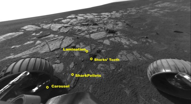 This image shows NASA's Mars Exploration Rover Opportunity's wheels and tracks in the extreme southwestern end of the outcrop in Meridiani Planum, Mars.