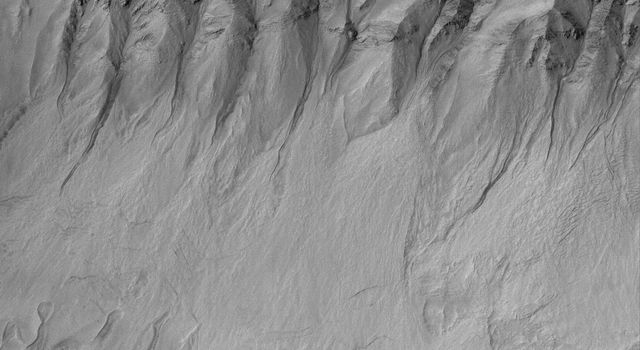 NASA's Mars Global Surveyor shows gullies and debris aprons in a crater on Mars. Gullies such as these may have formed by running water, carbon dioxide, or dry mass movement processes.