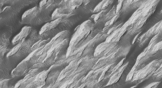 NASA's Mars Global Surveyor shows a portion of the wind-eroded 'White Rock' feature. Wind has sculpted the light-toned material into ridges and troughs known as yardangs.