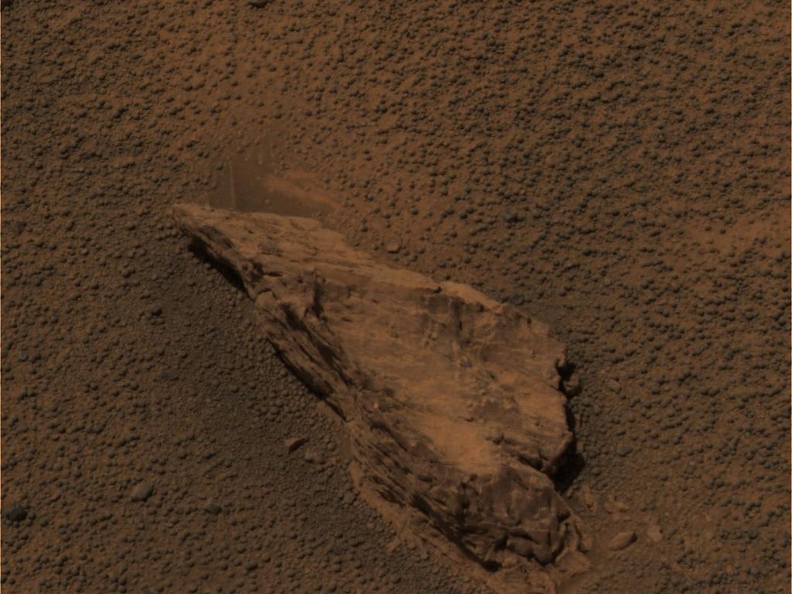 Space Images | A Lion of a Stone