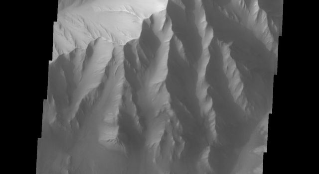 This image from NASA's 2001 Mars Odyssey released on Sept 17, 2004 shows the martian surface of Candor Chasma. Dunes and wind-shaped surfaces are very common in this area.