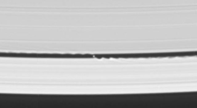 NASA's Cassini spacecraft's celestial sleuthing has paid off with a series of images which confirmed earlier suspicions that a small moon was orbiting within the narrow Keeler gap within Saturn's rings.