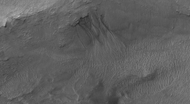 NASA's Mars Global Surveyor shows gullies emergent from beneath erosion-resistant rock layers in a trough south of Atlantis Chaos on Mars.