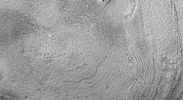 NASA's Mars Global Surveyor shows the interior of a typical crater in northern Acidalia Planitia on Mars. The floor is covered by material that forms an almost concentric pattern.