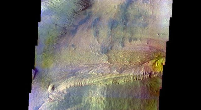 This false-color image released on June 1, 2004 from NASA's 2001 Mars Odyssey was collected January 29, 2004 during southern summer season. The image shows an area in the Ceti Mensa region on Mars.