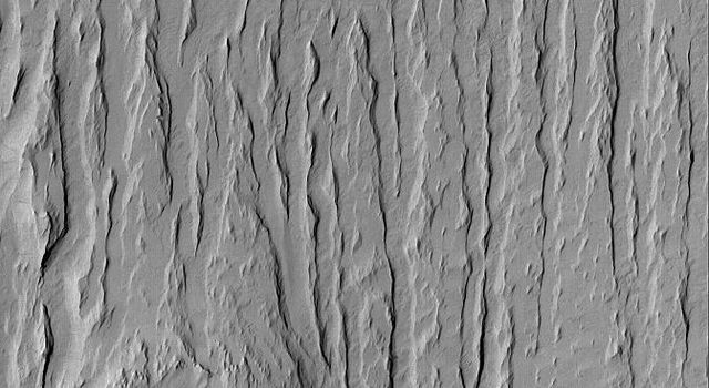 NASA's Mars Global Surveyor shows wind erosion has created yardang ridges and revealed the location of a formerly-buried meteor crater in in the Apollinaris Sulci region of Mars.