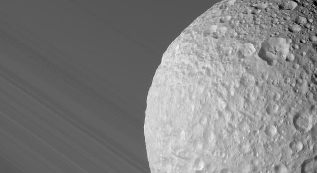 During its close flyby of Saturn's moon Mimas on Aug. 2, 2005, NASA's Cassini spacecraft caught a glimpse of Mimas against the broad expanse of Saturn's rings.