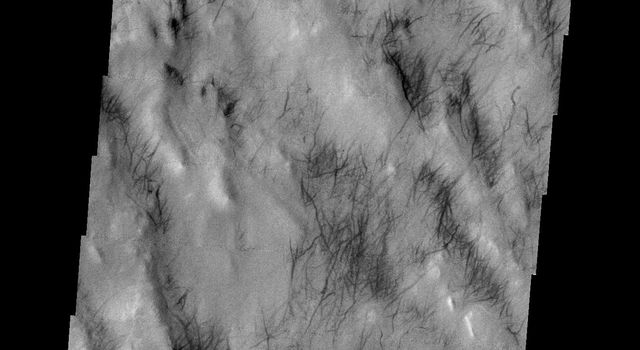 This image released on July 9, 2004 from NASA's 2001 Mars Odyssey shows dust carried aloft by the wind has settled out on every available surface creating sand dunes.southern hemisphere of Mars.