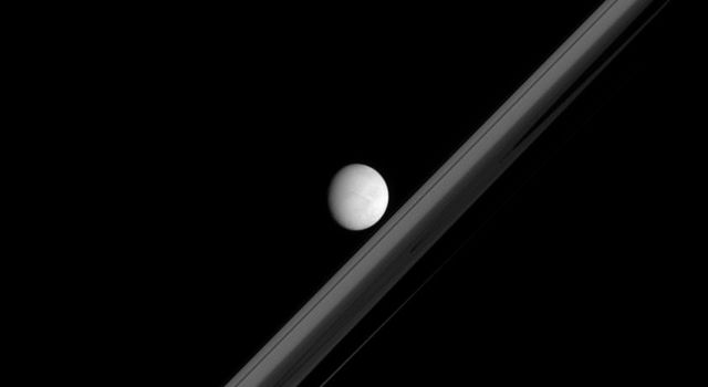 Saturn's bright moon Enceladus hovers here in this image from NASA's Cassini spacecraft, in front of a rings darkened by Saturn's shadow.