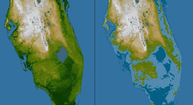 Southern Florida, Shaded Relief and Colored Height