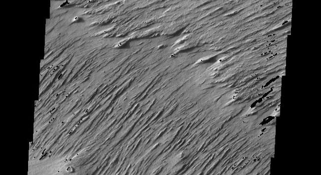 This image released on July 15, 2004 from NASA's 2001 Mars Odyssey shows windstreaks are features caused by the interaction of wind and topographic landforms such as yardangs, the remains of the rim and ejecta of the large impact crater on Mars.