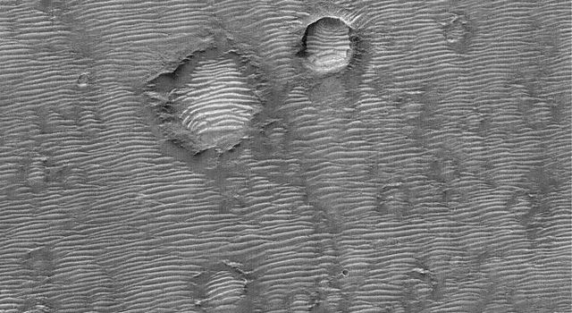NASA's Mars Global Surveyor shows hundreds of large ripples or small dunes covering the landscape in the Terra Tyrrhena region of Mars.