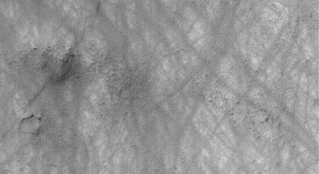 NASA's Mars Global Surveyor shows hundreds of dust devils may streak across the landscape, creating criss-cross patterns on the surface of Mars.