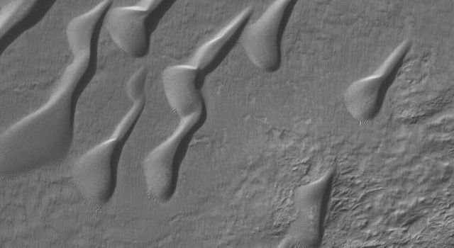 NASA's Mars Global Surveyor shows a field of sand dunes in a crater in Noachis Terra on Mars. Patches of autumn frost, possibly water ice, are evident.