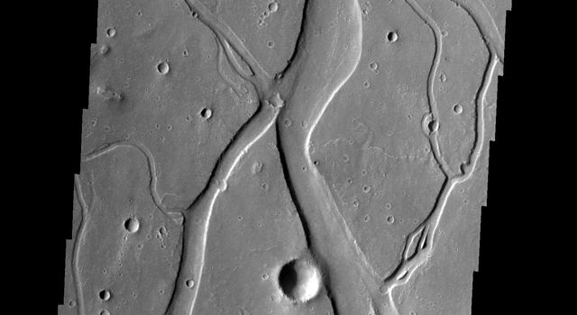 This image released on Dec 3, 2004 from NASA's 2001 Mars Odyssey shows a portion of Hebrus Vallis, a channel system on Mars located south of Granicus Vallis. Like Granicus Vallis, Hebrus Vallis originates close to the base of the Elysium volcanic complex.