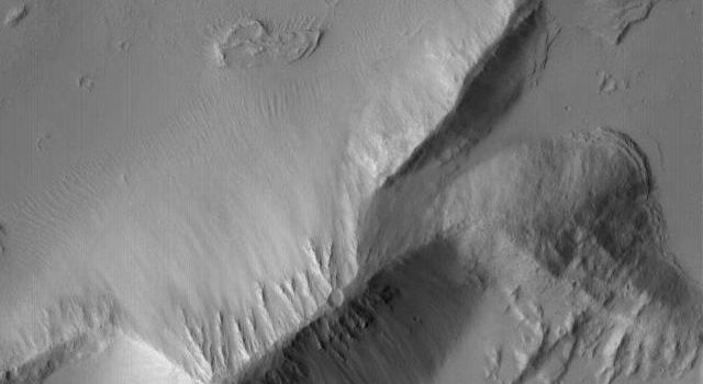 NASA's Mars Global Surveyor shows detailed layered rock features, mantled by fine dust, in the Sulci Gordii ridged region east of Olympus Mons on Mars.