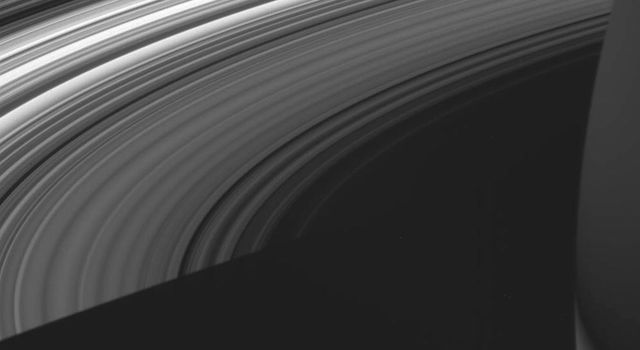 This view from NASA's Cassini spacecraft shows the unlit side of Saturn's splendid rings made visible by sunlight filtering through the rings from the lit side.