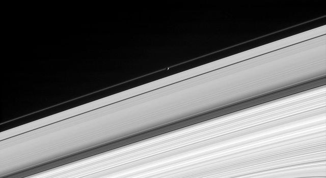 Saturn's moon Pandora glides in front of the narrow F ring, making the moon's oblong outline visible. This image from NASA's Cassini spacecraft also shows the A ring, Cassini Division, B ring, and part of the C ring.