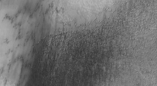 This image from NASA's Mars Odyssey spacecraft is completely dominated by dunes in the north polar region of Mars. Sand seas on Earth are often called ergs, an Arabic name for dune fields.