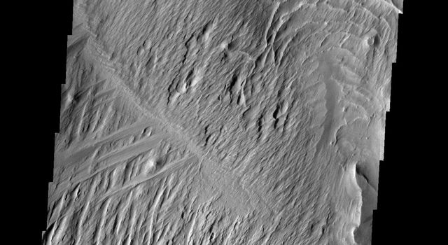 The Medusae Fossae Formation, shown in this image from NASA's Mars Odyssey spacecraft, is a large region of material that is easily eroded by the wind. The work of the wind has produced a variety of surface textures.