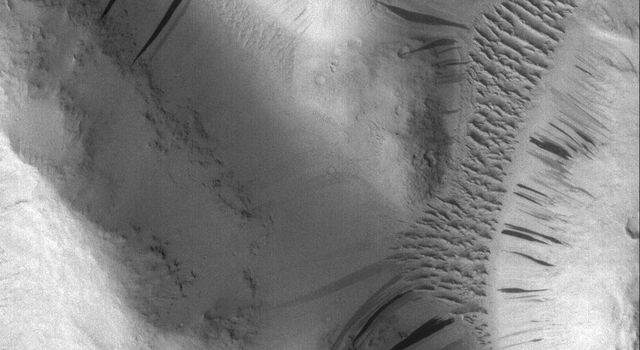 This image from NASA's Mars Global Surveyor shows dozens of dark slope streaks, created by dry avalanches of dust, extend from toward the base of dust-covered buttes. Large, dust-covered, windblown ripples surround the group.