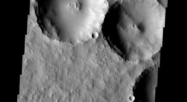 Dust slides occur within the larger craters on Mars in this image from NASA's 2001 Mars Odyssey spacecraft.