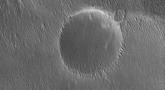 This NASA Mars Global Surveyor image shows small ridges in the Memnonia region of Mars. The ridges or yardangs, as they are called, are formed by wind erosion.