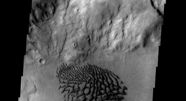 These dunes are located on the floor of Bunge Crater on Mars as seen by NASA's 2001 Mars Odyssey spacecraft.