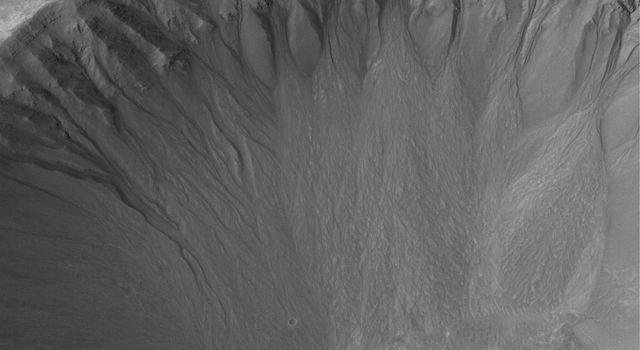 This NASA Mars Global Surveyor image shows an array of gullies in the north-northwest wall of a crater in Terra Cimmeria.