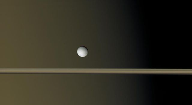 Saturn's moon Enceladus hangs like a single bright pearl against the golden-brown canvas of Saturn and its icy rings in this image captured by NASA's Cassini spacecraft.