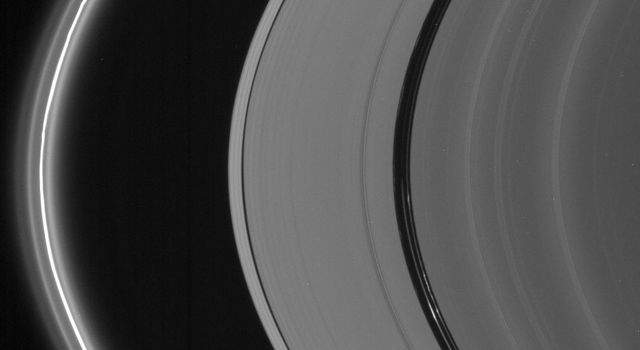Saturn's bright ringlets seen here are populated with microscopic icy particles and are among the brightest features in the rings at high phase angles as seen by NASA's Cassini spacecraft.