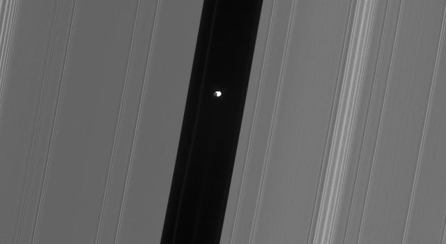 This view from NASA's Cassini spacecraft of Saturn's moon Pan in the Encke gap shows hints of detail on the moon's dark side, which is lit by saturnshine -- sunlight reflected off Saturn.