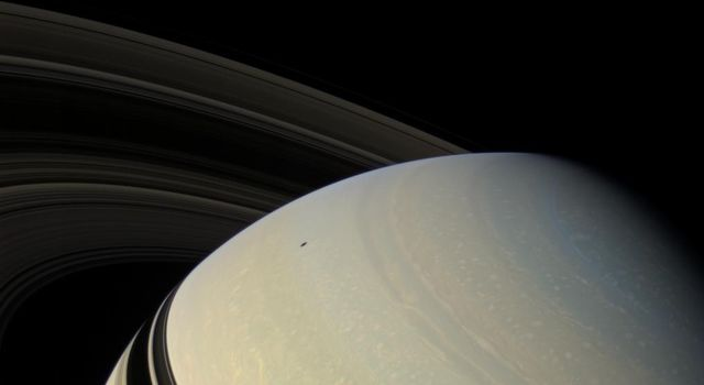 The ringed planet sits in repose, the center of its own macrocosm of many rings and moons and one artificial NASA satellite named Cassini. Mimas (397 kilometers, or 247 miles across) is visible at upper left.