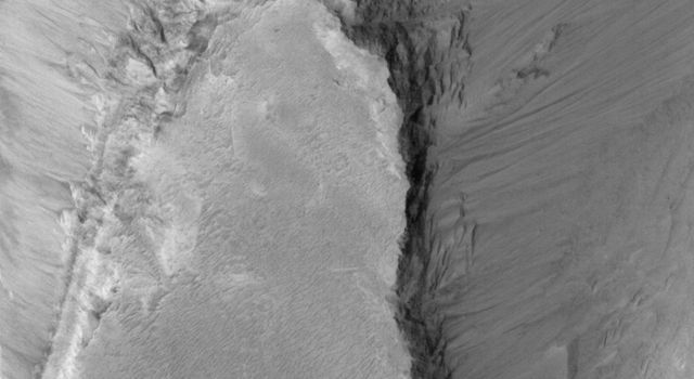NASA's Mars Global Surveyor shows a portion of a mesa in eastern Candor Chasma on Mars.