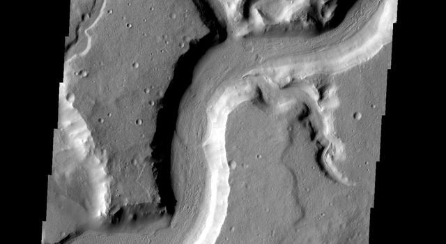 This image shows the main channel of Mamers Vallis and several smaller tributary channels on Mars as seen by NASA's 2001 Mars Odyssey spacecraft.