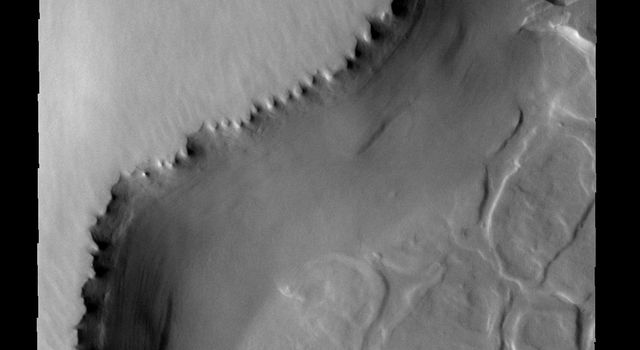The unusual surface pattern exists at the margin of the north polar layered deposit on Mars as seen by NASA's Mars Odyssey spacecraft.