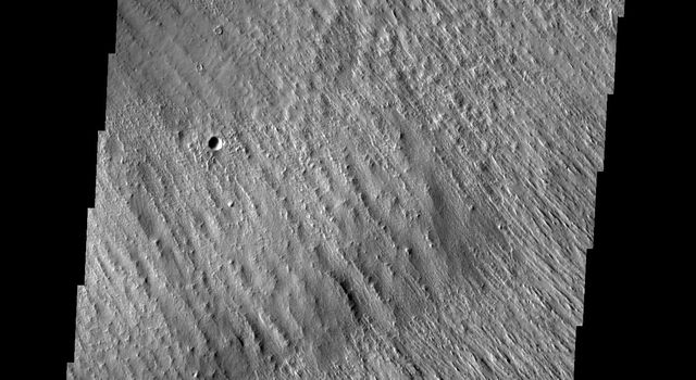 Wind action in the Medusae Fossae region is creating yardangs in the easily eroded material on Mars as seen by NASA's Mars Odyssey spacecraft.